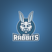rabbit logo mascot
